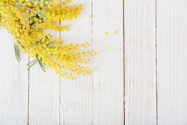 Mimozy na białym drewnianym tle