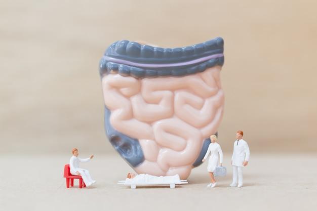 Miniaturowy lekarz i pielęgniarka obserwujący i omawiający ludzkie jelita
