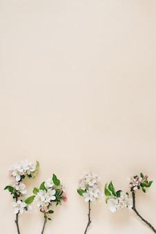 Minimalistyczna koncepcja gałęzie jabłoni z białymi kwiatami na beżowym tle