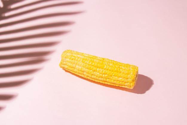 Minimalistyczna słoneczna letnia kompozycja ze świeżą kolbą kukurydzy i cieniem liści palmowych na różowym tle