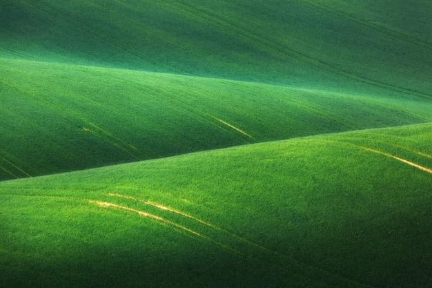 Minimalistyczny krajobraz z zielonymi polami, wzgórza o wschodzie słońca