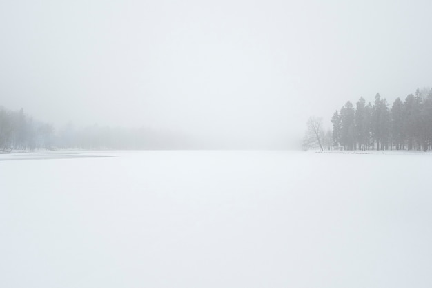 Minimalistyczny zimowy krajobraz zamieć w winter park