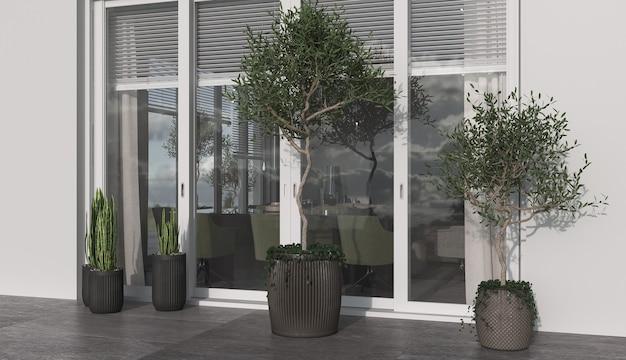 Minimalizm nowoczesna architektura projektuje światło słoneczne i biały kolor z dużym oknem. sadzi drzewa oliwne i doniczki. renderowanie 3d. ilustracja 3d.