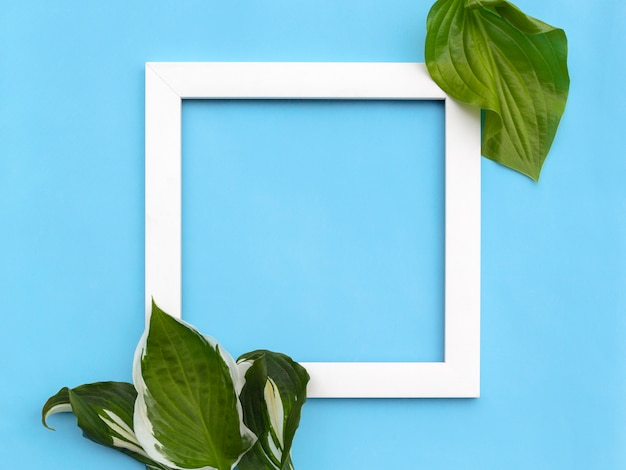 Minimalna kompozycja kreatywna - kwadratowa ramka z liśćmi na jasnym tle.