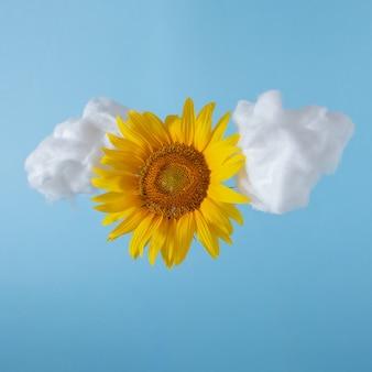 Minimalna kompozycja z miękkim puszystym obłokiem i słonecznikiem na tle błękitnego nieba. kreatywny symbol przechowywania w chmurze.