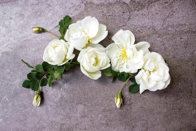 Minimalna koncepcja wiosny. kreatywne kwiaty leżały płasko. widok z góry.