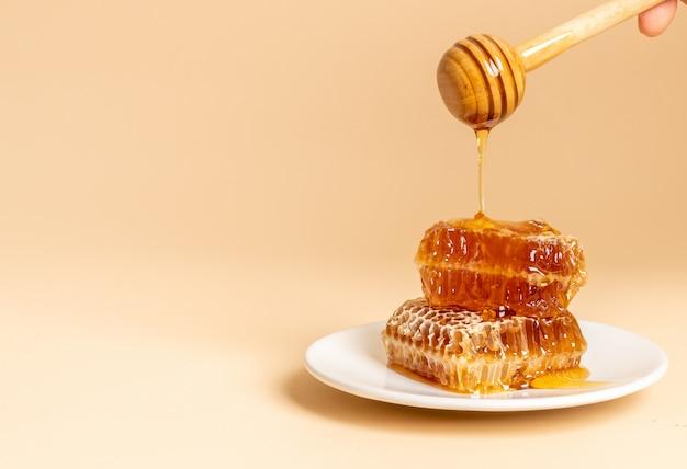 Miód i świeże plastry miodu