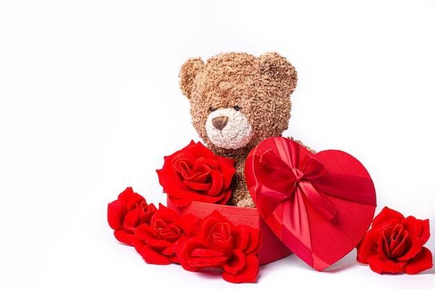 Miś w pudełku róż na białym tle