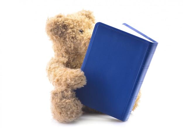 Miś zabawka z książką na białym tle