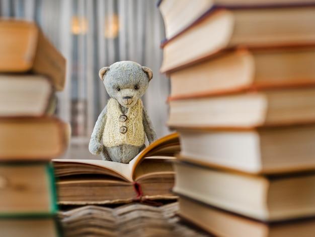 Misia pluszowego misia czytelnicza książka w bibliotece