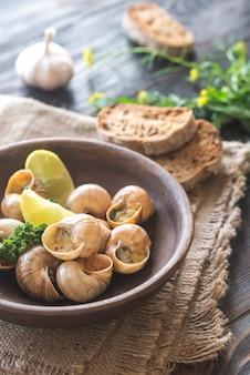 Miska gotowanych ślimaków