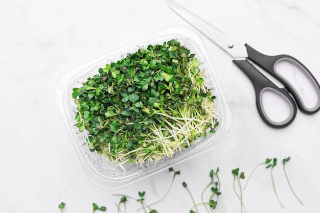 Miska microgreens z nożyczkami