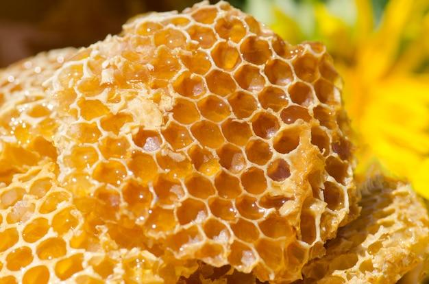 Miska ze świeżymi plastrami miodu i miodem. organiczne naturalne składniki