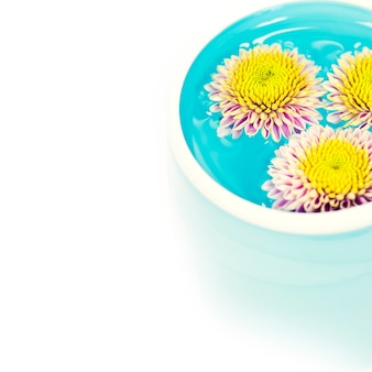 Miskę wody i kwiatów