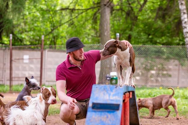 Mistrz i jego posłuszny pies w ośrodku szkolenia psów