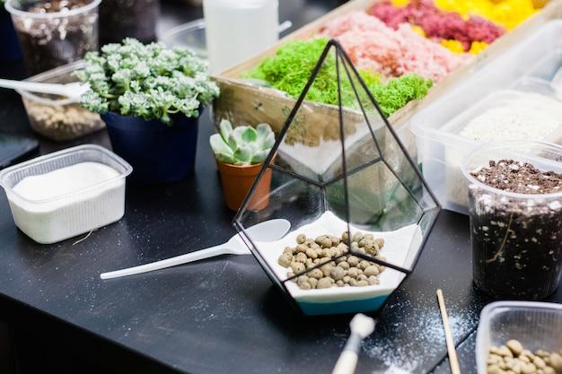 Mistrzowska klasa sadzenia kaktusów i sukkulentowa w formie szkła