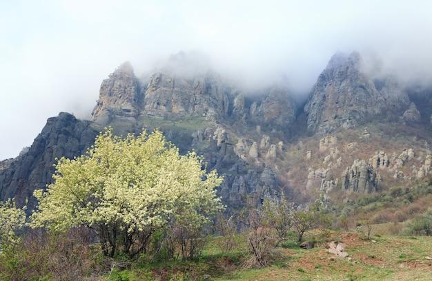 Misty skalista góra demerdzhi widok (krym, ukraina) i kwitnące wiśniowe drzewo z przodu.