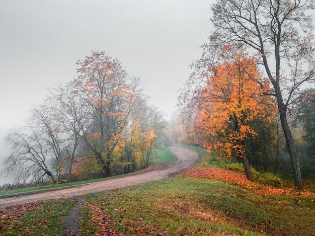 Mistyczny jesień krajobraz z mgłą i ścieżką w parku