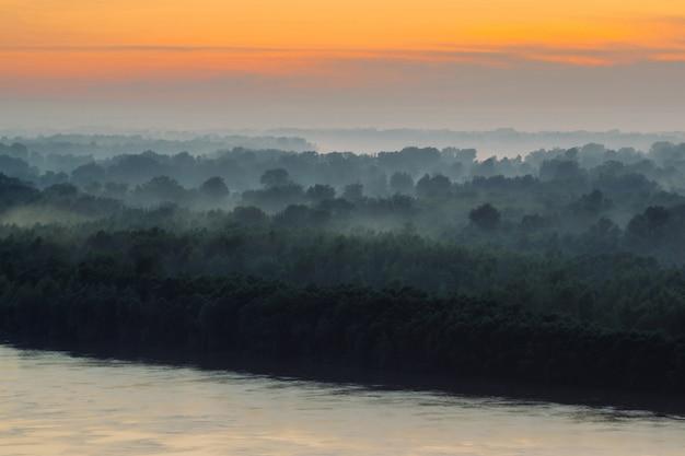 Mistyczny widok na brzeg dużej wyspy z lasem pod mgiełką wczesnym rankiem. mgła wśród warstw z sylwetek drzew pod ciepłym niebem przedświtu.