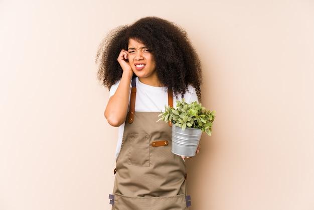 Młoda afro ogrodniczka kobieta trzyma rośliny isolatedcovering uszy rękami.