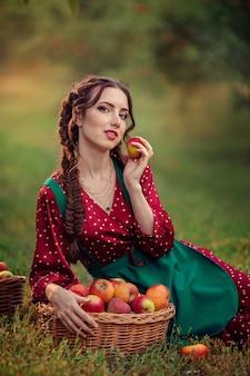 Młoda atrakcyjna kobieta w czerwonej fartuchu w zielonej sukience zbiera dojrzałe jabłka w wiklinowych koszach w sadzie jabłkowym.