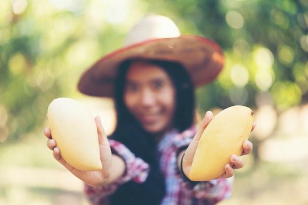 Młoda azjatycka średniorolna zrywania mango owoc w organicznie gospodarstwie rolnym
