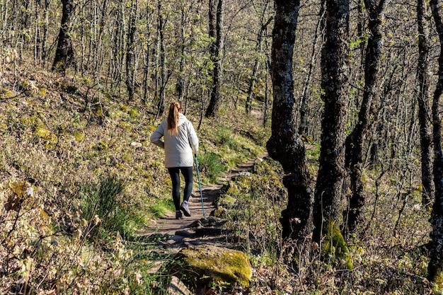 Młoda blondynka z kucykiem wędrówki po lesie z kijem trekkingowym.