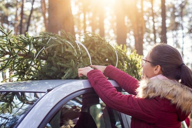 Młoda brunetka dziewczyna na jarmarku bożonarodzeniowym, podnosząc drzewo na dachu samochodu