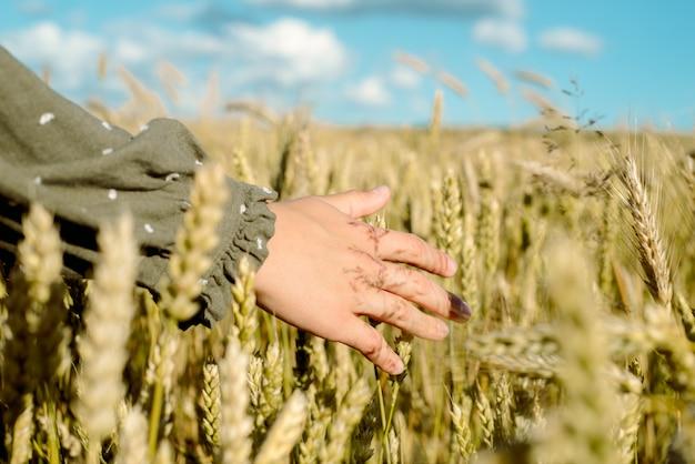 Młoda dziewczyna tańczy w polu pszenicy. przesuwa dłonią po uszach. stoi plecami. włosy latające na wietrze, styl życia. emocjonalnie kręci się i skacze.