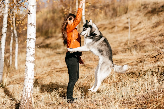 Młoda dziewczyna trenuje psa rasy husky na zewnątrz