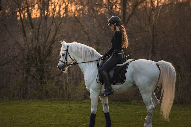 Młoda kobieta kaukaski na koniu w ośrodku koni