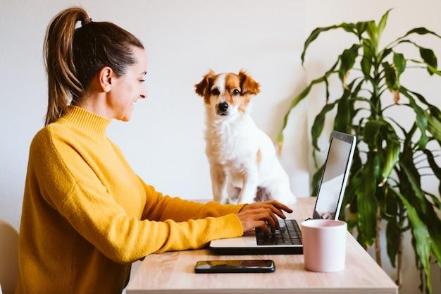 Młoda kobieta pracuje na laptopie w domu, poza tym ładny mały pies. praca w domu