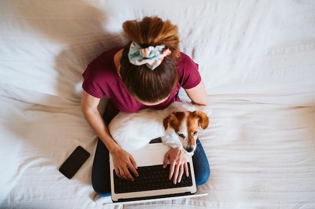 Młoda kobieta pracuje na laptopie w domu, siedząc na kanapie, poza tym ładny mały pies. koncepcja technologii i zwierząt domowych