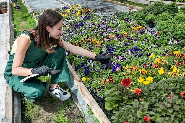 Młoda kobieta pracuje w szklarni opiekując się kwiatami. styl życia