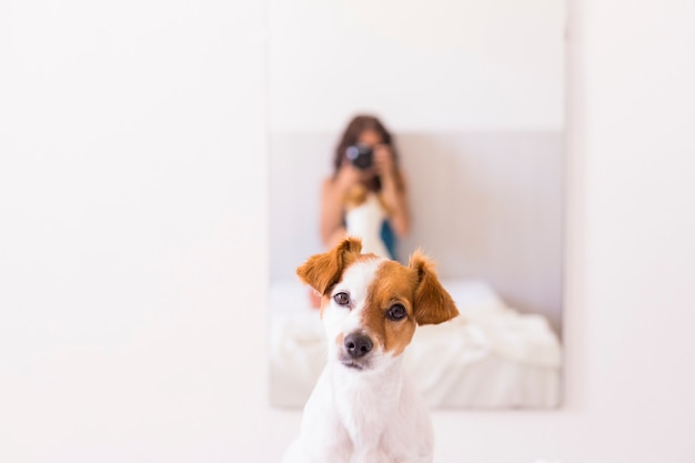 Młoda kobieta siedzi na łóżku i robi zdjęcie lustrzanym aparatem do swojego ślicznego małego psa na lustrze. dzień. l styl życia ze zwierzętami domowymi