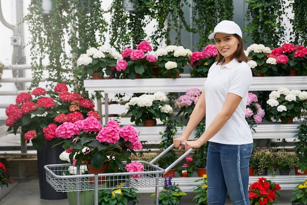 Młoda kobieta trzyma wózek z piękną różową hortensją