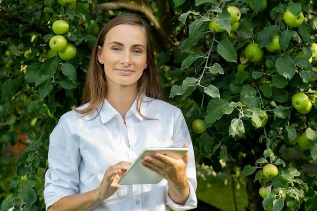 Młoda kobieta w białej koszuli z tabletem sprawdza wzrost jabłek na zielonych drzewach w ogrodzie