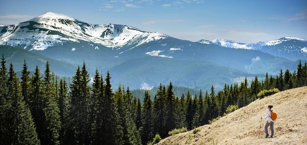 Młoda kobieta w górach i krokusach na odgórnym widoku, wiosny pojęcie