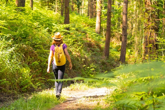 Młoda kobieta w kapeluszu spacerująca z żółtym plecakiem przez leśne sosny