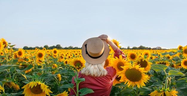 Młoda kobieta w polu słoneczników, widok z tyłu. pole z kwiatami. skopiuj miejsce.