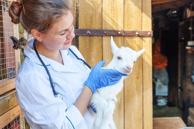 Młoda kobieta weterynarz ze stetoskopem trzymająca i badająca koźlę na ranczo młodym g...