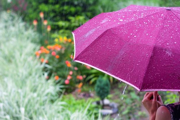 Młoda kobieta z fioletowym parasolem w parku w deszczowy letni dzień