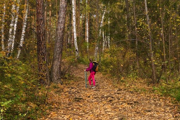 Młoda kobieta z kijkami do chodzenia i plecakiem uprawia trekking w jesiennym lesie