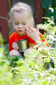 Młoda kobieta zbiera jagody
