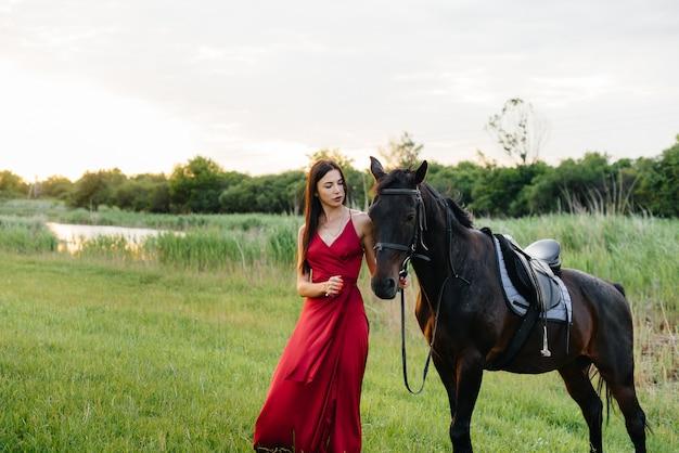Młoda ładna dziewczyna w czerwonej sukience pozuje na ranczo z rasowym ogierem o zachodzie słońca. miłość i troska o zwierzęta.