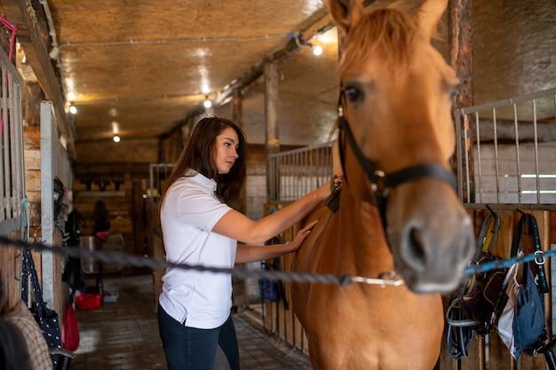 Młoda, ładna sportsmenka dba o swojego konia wyścigowego podczas szczotkowania grzbietu przed lub po treningu