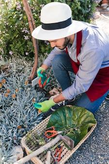 Młoda męska ogrodniczka zbiera kwiatu w ogródzie