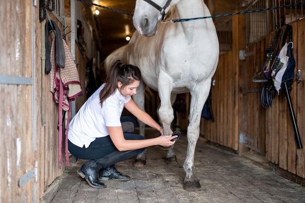 Młoda opiekunka w codziennym stroju do czyszczenia kopyt białego rasowego konia wyścigowego ze specjalną szczotką w stajni
