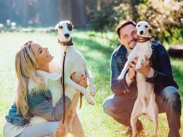 Młoda para kobieta i mężczyzna w dżinsowych ubraniach spacerujących z dwoma psami rasy whippet na świeżym powietrzu jesienią