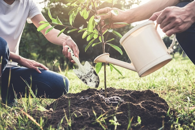Młoda para sadzenia drzewa